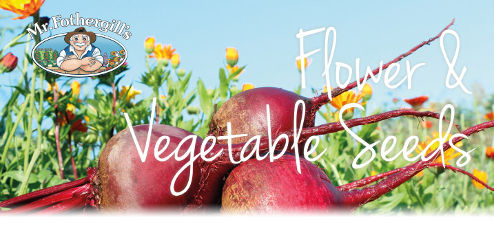 Vegetable Explorer Range... Fascinating varieties for every kitchen gardener to try