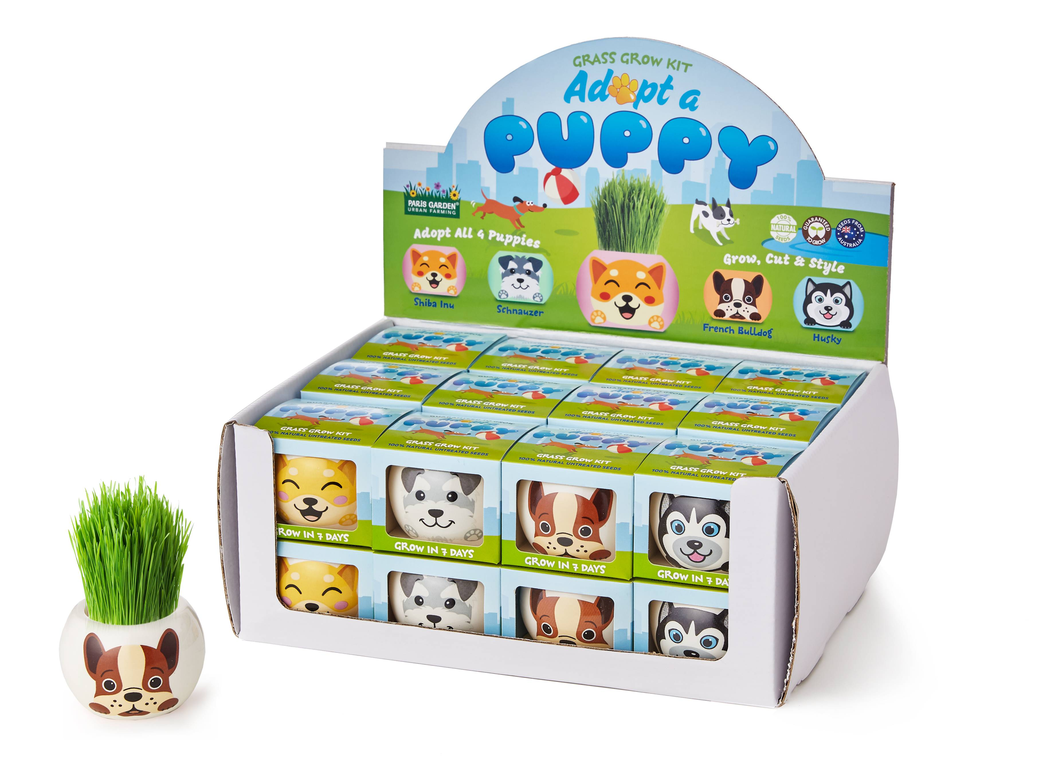 Grass Hair Kits Adopt a Puppy